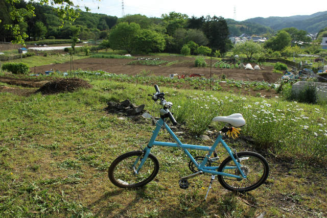 nanakuni13-5_120.jpg