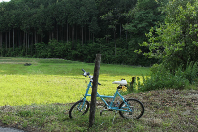 nanakuni13-5_124.jpg