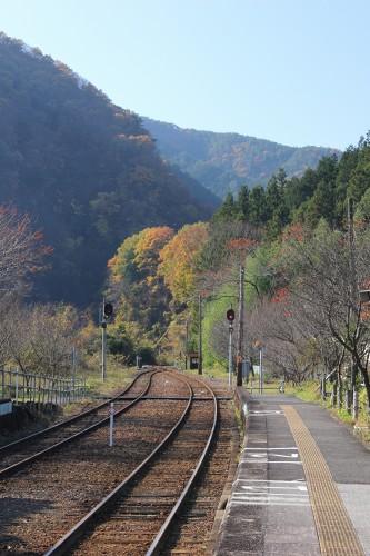 nikkou_030.jpg