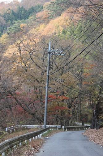 nikkou_095.jpg