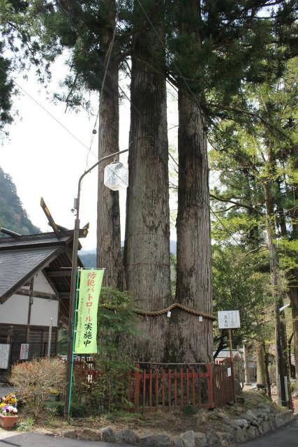 unazawa13-4_036.jpg