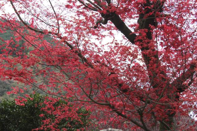 unazawa13-4_061.jpg