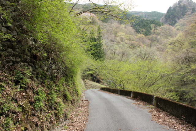 unazawa13-4_338.jpg