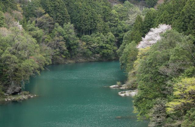 unazawa13-4_603.jpg
