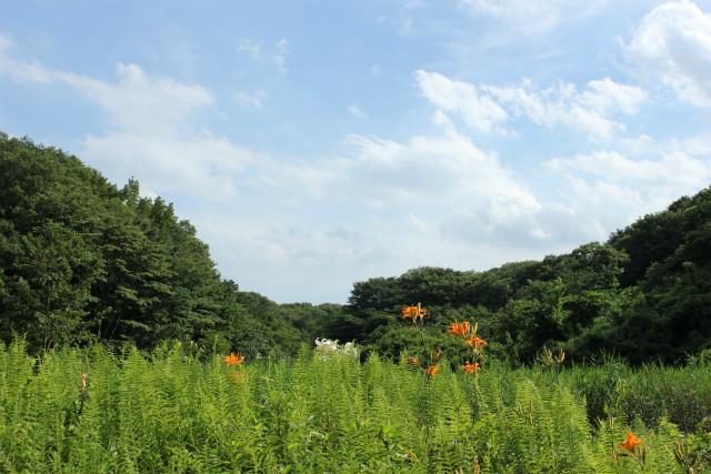 unazawa13-7_186.jpg