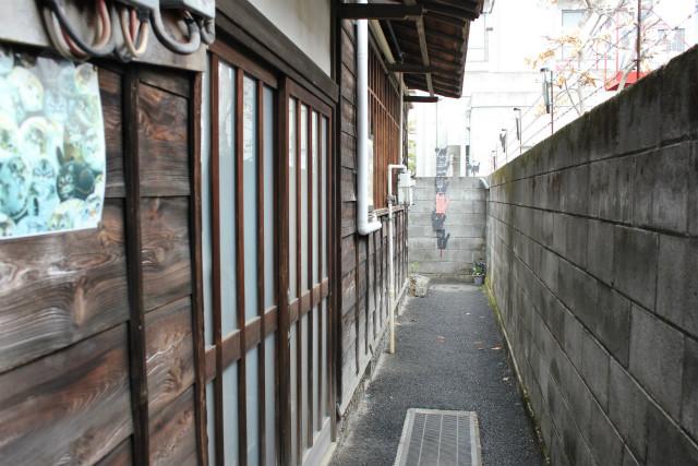 wakakusa13-3_018.jpg