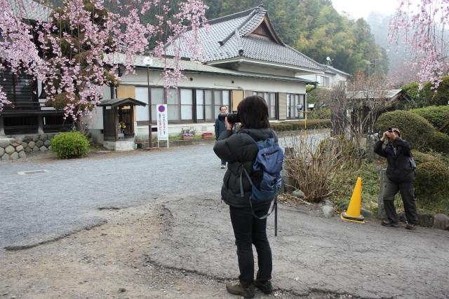 wakakusa13-3_061.jpg