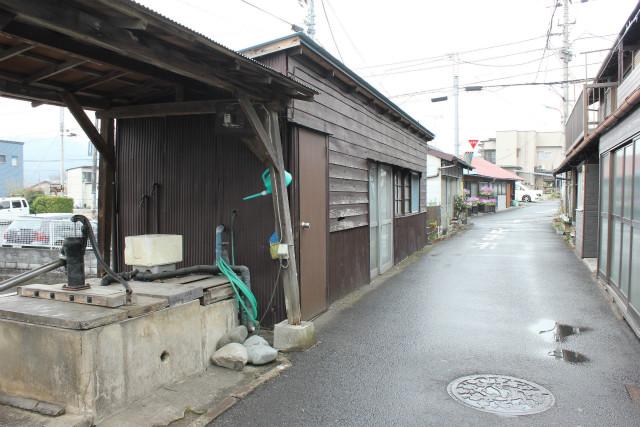 wakakusa13-3_250.jpg