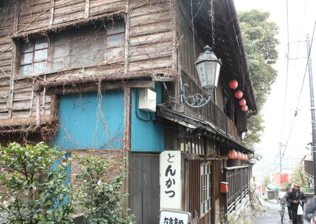 wakakusa13-3_264.jpg