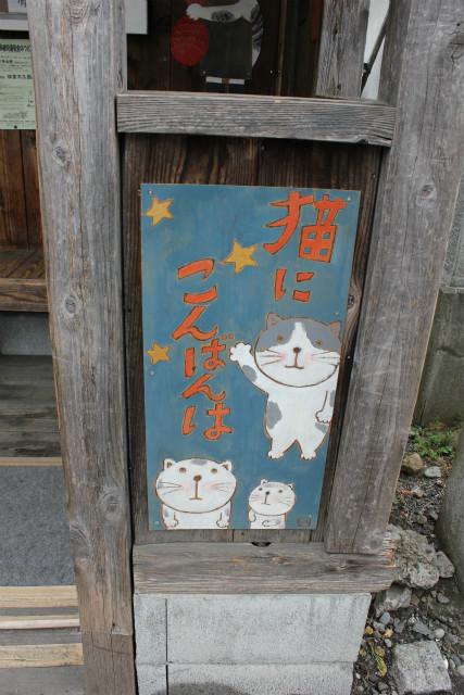 wakakusa13-3_271.jpg
