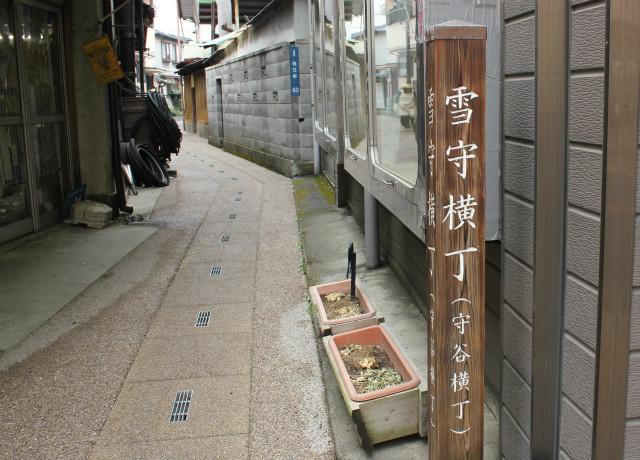 wakakusa13-3_279.jpg