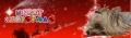 クリスマスバナー(リヨン)
