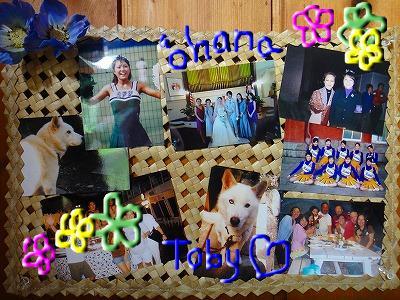 snap_sirena1225_20111616449.jpg