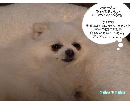 ne_20120420232449.jpg