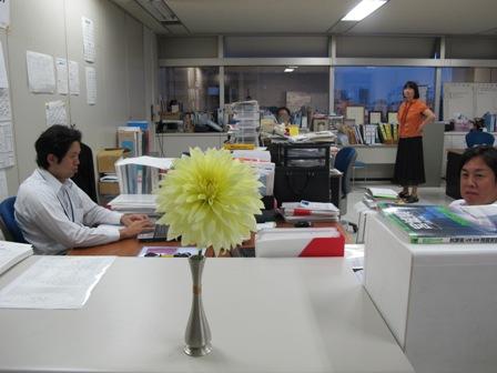 ダリア(黄)&ダリア(オレンジ)