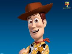 wp2_woody_ts3_1600x1200.jpg