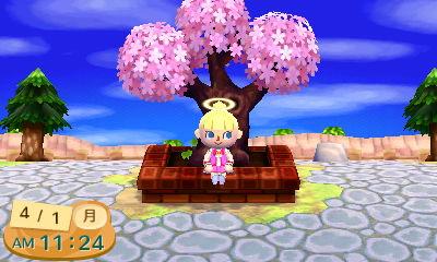HNI_0042桜★