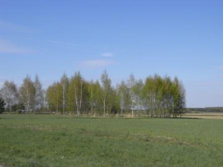 1.途中の風景