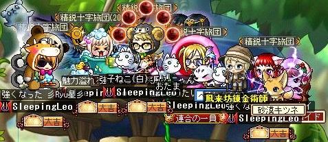 Maple130204_234042.jpg