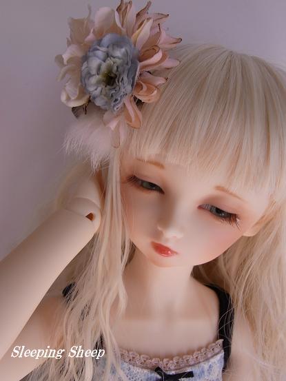 RIMG0284迷夢