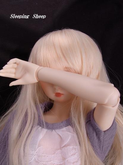RIMG0946迷夢