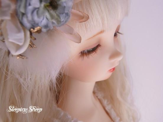 RIMG0357迷夢