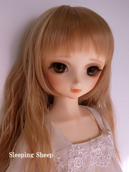 RIMG0543-2糖花