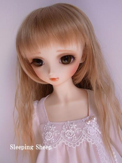 RIMG0548-2糖花