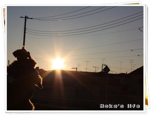 20100101f.jpg
