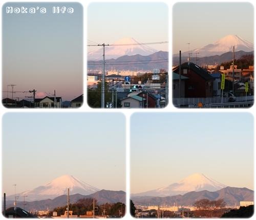 20110102f1.jpg