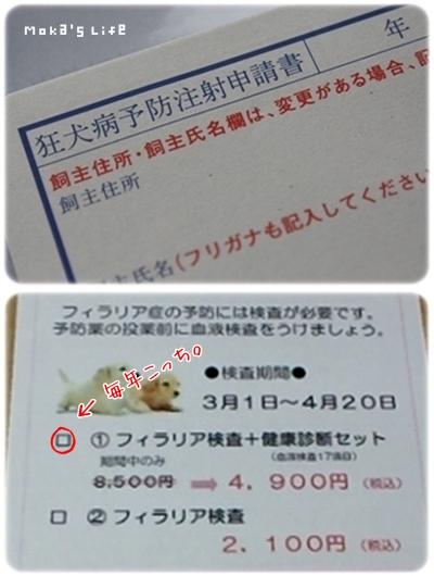 20110429f1.jpg