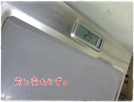 20110528f3.jpg