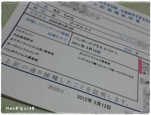 20110528f6.jpg