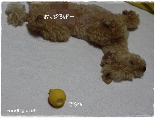 20110711f4.jpg