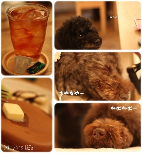 CAFE_20101124003336.jpg