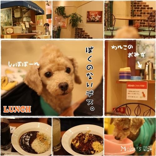 LUNCH_20101109212934.jpg