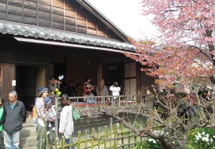 harasaku2.jpg