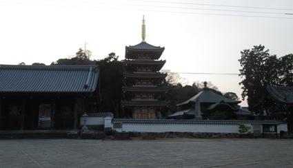 maruhafu-07.jpg