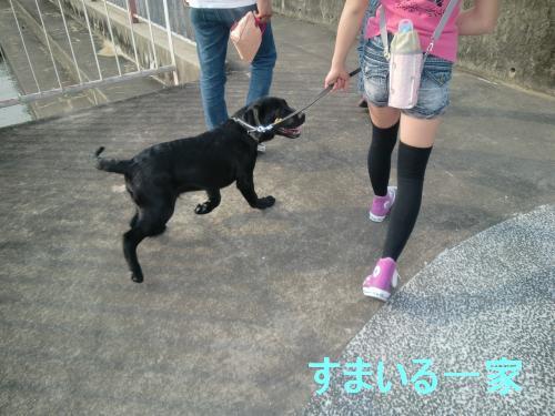 CIMG3714_GW公園 1