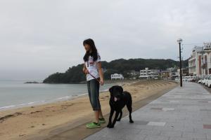 雨の小旅行。海岸散歩