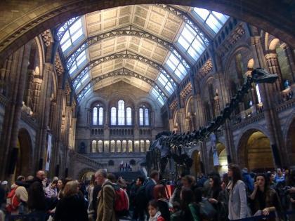 naturalhistorymuseum2