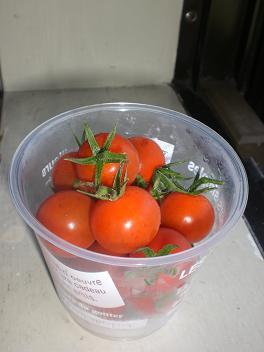カップ入りミニトマト