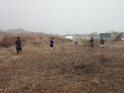 岩切第二農園開墾風景1