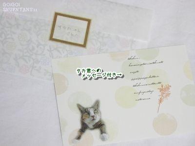お手紙とメッセージカード