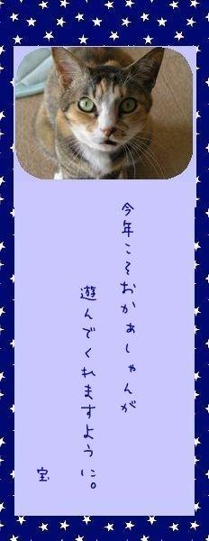 七夕祭り 2010 12 タカ君のお願い事