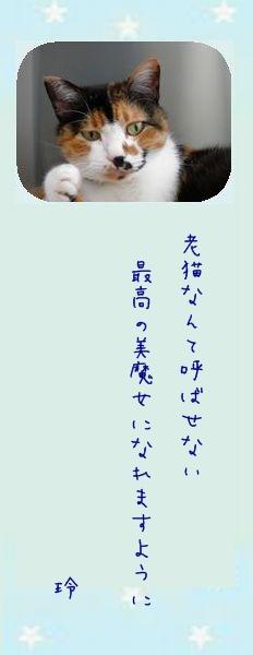七夕祭り 2011 01 レイコさんのお願い事