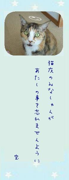 七夕祭り 2011 02 タカ君のお願い事