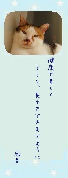 七夕祭り 2011 03 マー君のお願い事