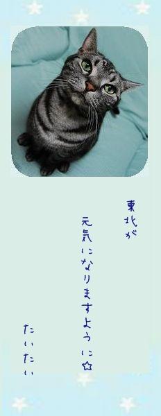 七夕祭り 2011 04 たいたいさんのお願い事