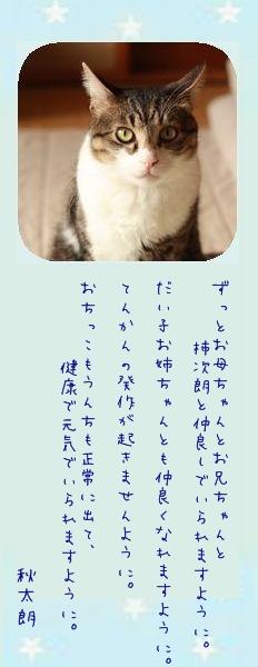 七夕祭り 2011 11 秋太朗さんのお願い事